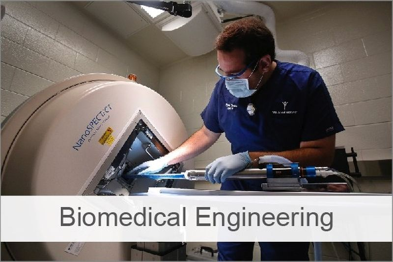 Scholarships for Biomedical Engineering, 2018-2019