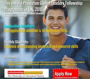 Oxford-Princeton global fellowship