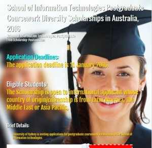 school of information technologies scholarship