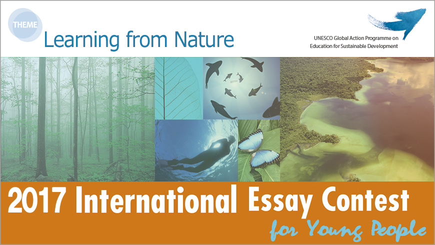 Goi Peace Foundation International Essay Contest For Young People In  Goi Peace Foundation International Essay Contest For Young People In Japan I Need A Writer For My Assignment Palagrisim also Thesis Statement Examples For Essays  I Need Some One To Write A Report