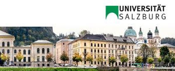 research fellowship at university of salzburg in austria