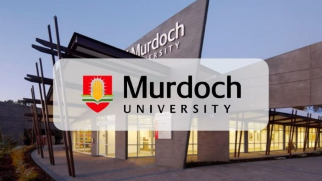 Academic Excellence funding for International Students at Murdoch University in Dubai, 2019