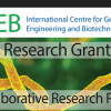 ICGEB Research Grants