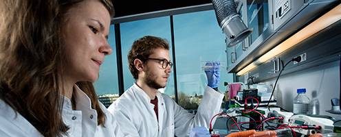 12 PhD Positions at Biotech Research and Innovation Centre