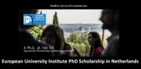 European University Institute PhD Scholarship in Netherlands, 2019