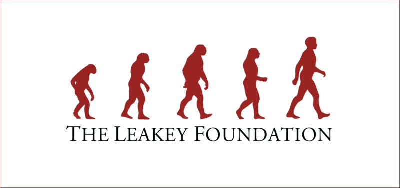 Leakey Foundation Research Grants for International PhD Students, USA