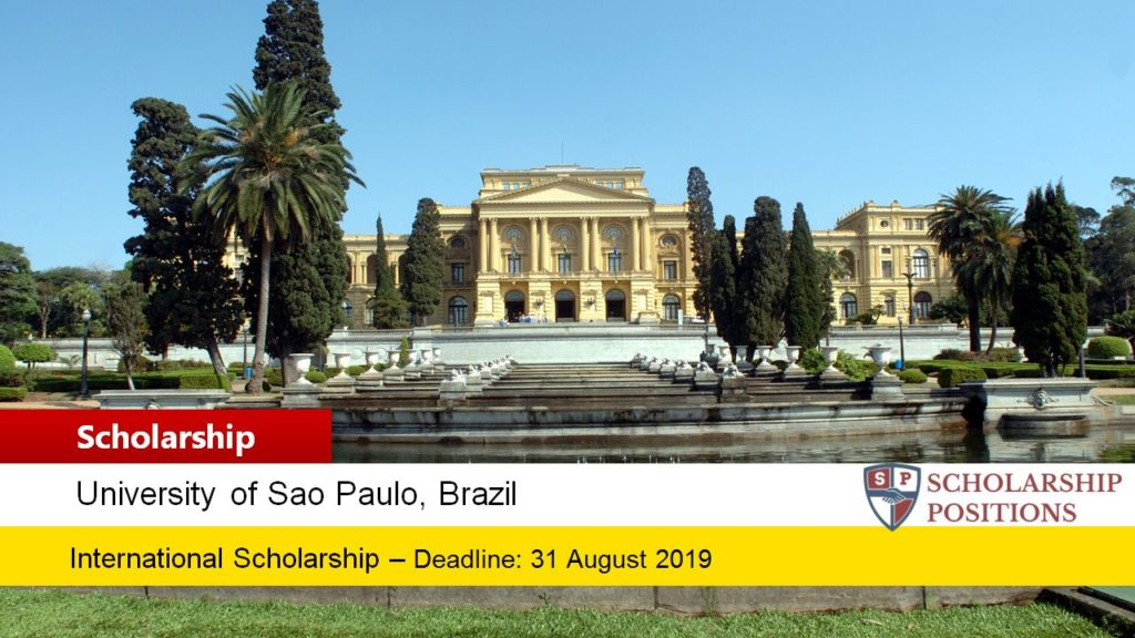 University of São Paulo INCOR Postdoctoral Research Fellowship in Brazil