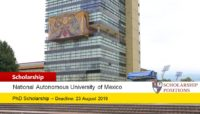 UNAM Post Doctoral program in Mexico, 2019