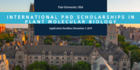Yale University International PhD Positionsin Plant Molecular Biology in the USA