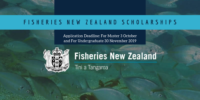 Fisheries New Zealand Scholarships for Masters and Undergraduate Students, 2020