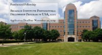 Beckman Institute Postdoctoral Fellowship Program in USA, 2020