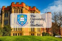 International Baccalaureate Scholarship at University of Sheffield in UK, 2020