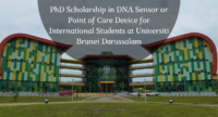 PhD Scholarship in DNA Sensor or Point of Care Device for International Students at Universiti Brunei Darussalam