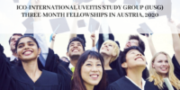 ICO-International Uveitis Study Group (IUSG) Three-Month Fellowships in Austria, 2020