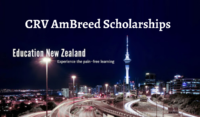 CRV AmBreed international awards in New Zealand