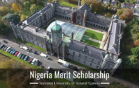 National University of Ireland Galway Nigeria Merit Scholarship, 2020