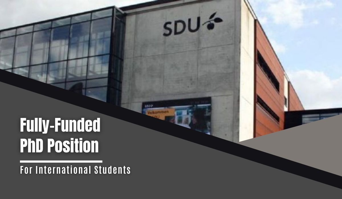 SDU Fully-Funded PhD Position in Property-based Testing for International Students, Denmark